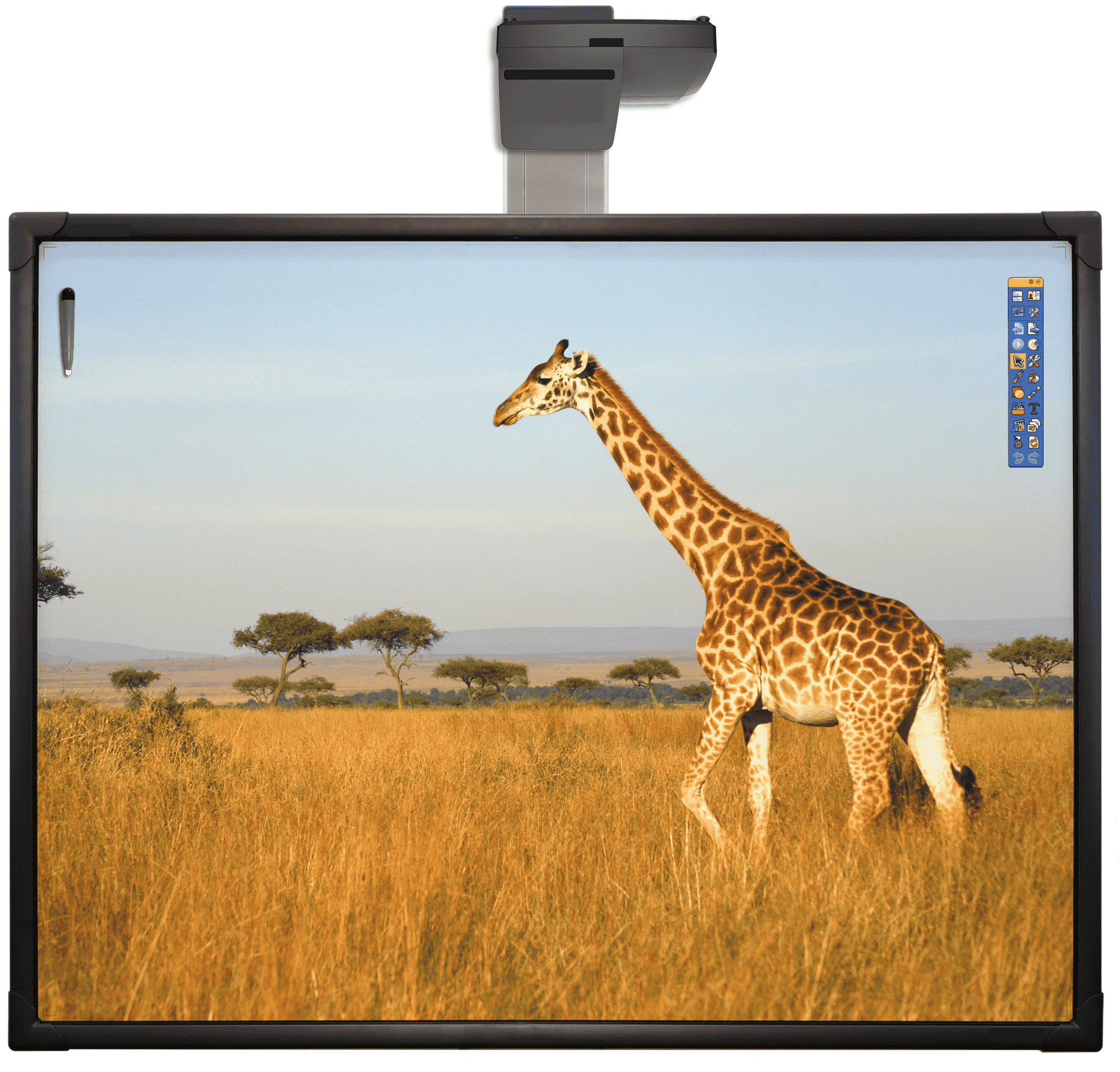 lim lavagna interattiva multimediale